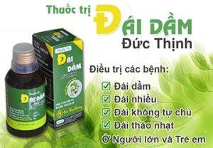 dai dam duc thinh 300x208 - Top 7 sản phẩm của nhà thuốc Đức Thịnh Đường được ưa chuộng