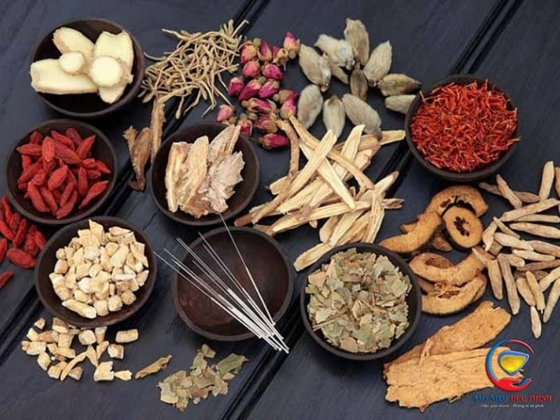 cach chua viem duong tiet nieu dong y hieu qua 2 - Cách chữa viêm đường tiết niệu bằng Đông Y hiệu quả
