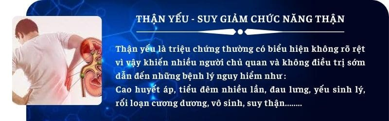 than yeu - Đặt Mua Bảo Niệu Đức Thịnh