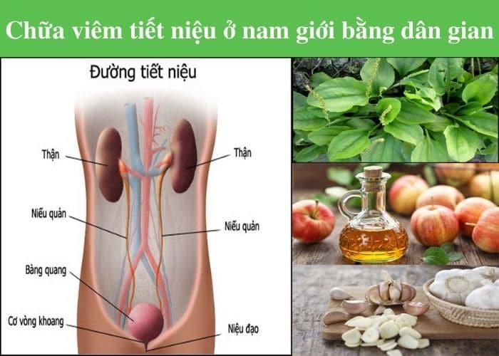 bai thuoc dan gian chua viem duong tiet nieu nam gioi - [ HỎI - ĐÁP] Nguyên nhân gây viêm đường tiết niệu ở nam giới là gì?