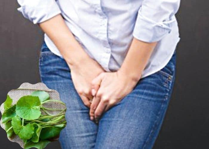 cach chua tieu rat bang rau ma - Cách chữa tiểu rắt ở phụ nữ hiệu quả nên thử ngay