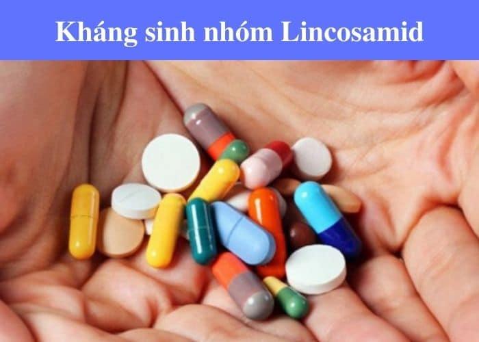 """su dung Lincosamid tri viem duong tiet nieu - Thuốc kháng sinh điều trị viêm đường tiết niệu - """" CON DAO HAI LƯỠI"""" cho sức khỏe của chính bạn."""
