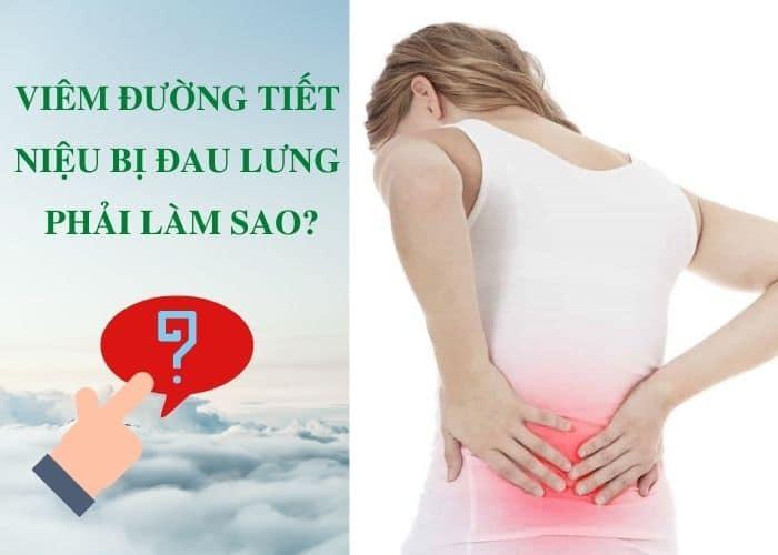 viem duong tiet nieu bi dau lung phai lam sao - [ GIẢI ĐÁP] Viêm đường tiết niệu bị đau lưng phải làm sao?