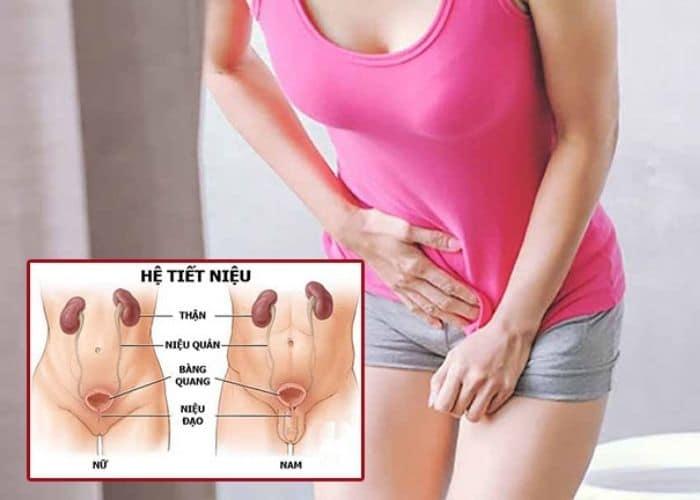5. trieu chung viem duong tiet nieu - Viêm đường tiết niệu gây chậm kinh. Thực hư hiện tượng này là gì?