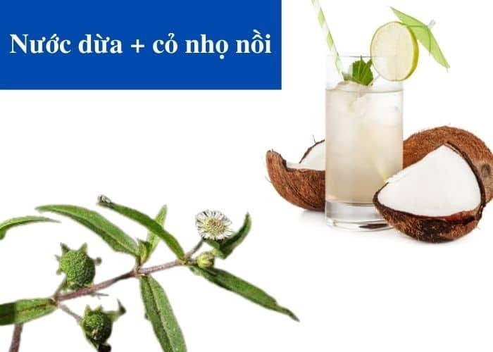 7.cach dung nuoc dua co nho noi chua viem tiet nieu - [ GÓC HỎI - ĐÁP] Chữa viêm đường tiết niệu bằng nước dừa có hiệu quả không?