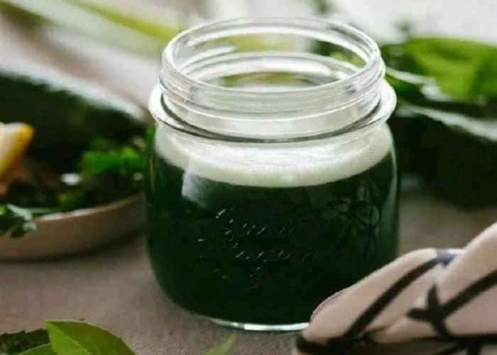 chua dai dam bang nuoc rau ngot song - [ BÍ QUYẾT] Chữa bệnh đái dầm bằng rau ngót hiệu quả ngay tại nhà