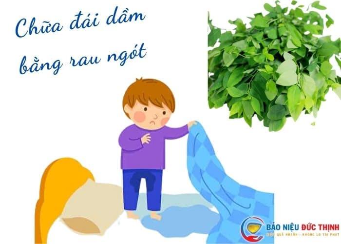 chua dai dam bang rau ngot - [ BÍ QUYẾT] Chữa bệnh đái dầm bằng rau ngót hiệu quả ngay tại nhà