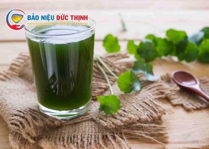 chua tieu buot ra mau bang rau ma - Top 5+ Cách chữa tiểu buốt ra máu tại nhà nhanh và hiệu quả nhất hiện nay