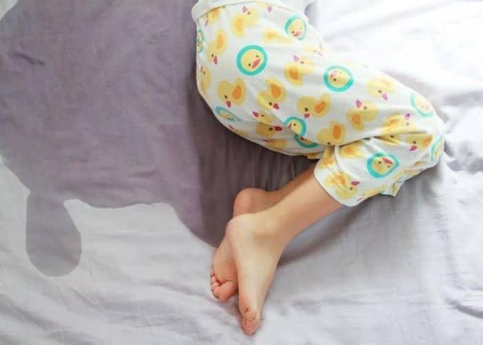 luu y chua dai dam bang nuoc rau ngot - [ BÍ QUYẾT] Chữa bệnh đái dầm bằng rau ngót hiệu quả ngay tại nhà