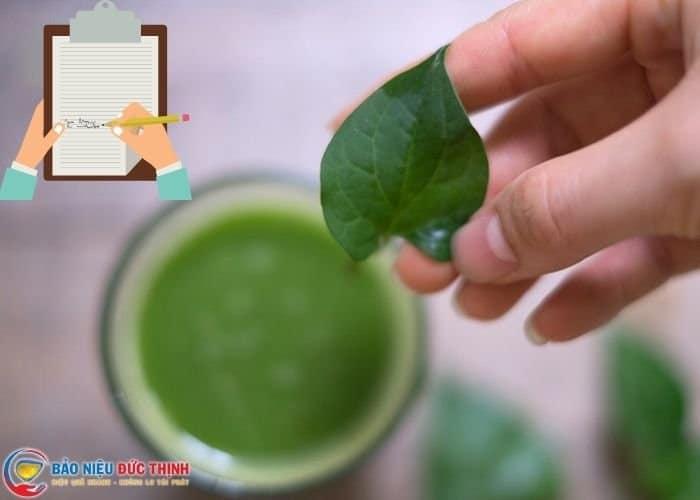 luu y chua viem tiet nieu bang rau diep ca - Top 5 cách dùng rau diếp cá chữa viêm đường tiết niệu hiệu quả bất ngờ
