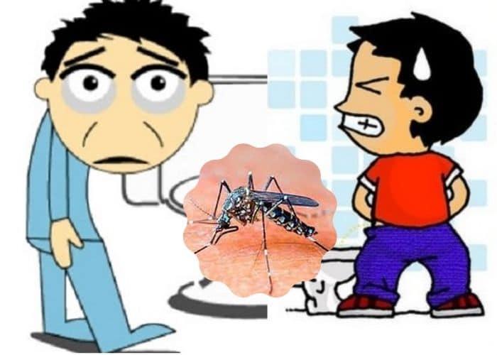 sot xuat huyet di tieu buot 1 - Hiện tượng sốt xuất huyết đi tiểu buốt gây hại cho sức khỏe người bệnh