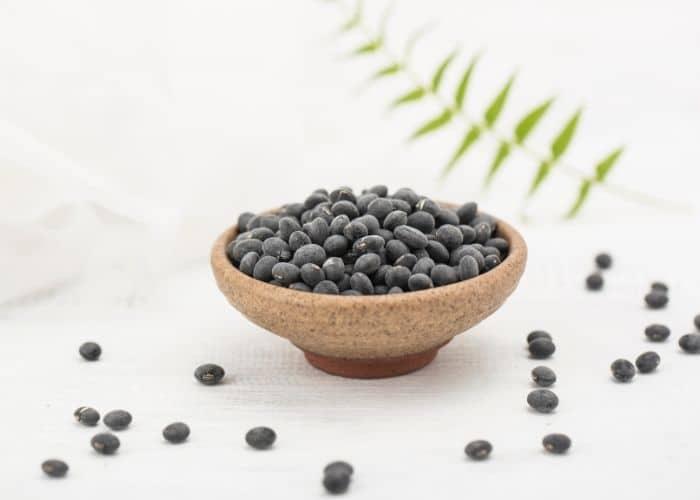 tac dung do den theo y hoc hien dai - BẬT MÍ 3+ Cách chữa viêm đường tiết niệu bằng đỗ đen đơn giản và hiệu quả ngỡ ngàng
