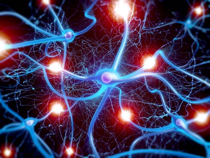 benh cang tuc bang quang 6 - 1001 sự thật có thể bạn đã bỏ lỡ về bệnh căng tức bàng quang