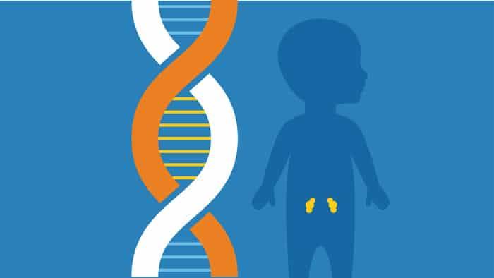 dau hieu than yeu o tre em 3 - Dấu hiệu thận yếu ở trẻ em là gì? Tất tần tật những gì phụ huynh cần biết về chứng thận yếu ở trẻ