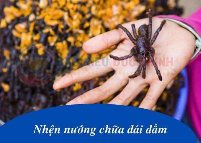 """nhen nuong chua dai dam - Chia sẻ bài thuốc dân gian """" kỳ quái"""" : ăn nhện nướng chữa đái dầm"""