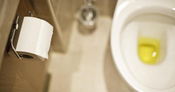 nuoc tieu co mui la - Nước tiểu có mùi lạ có sao không? Làm thế nào để xử lý nước tiểu có mùi?