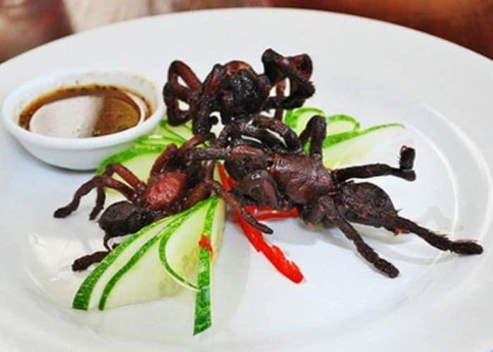 """tai sao an nhen nuong chua dai dam - Chia sẻ bài thuốc dân gian """" kỳ quái"""" : ăn nhện nướng chữa đái dầm"""