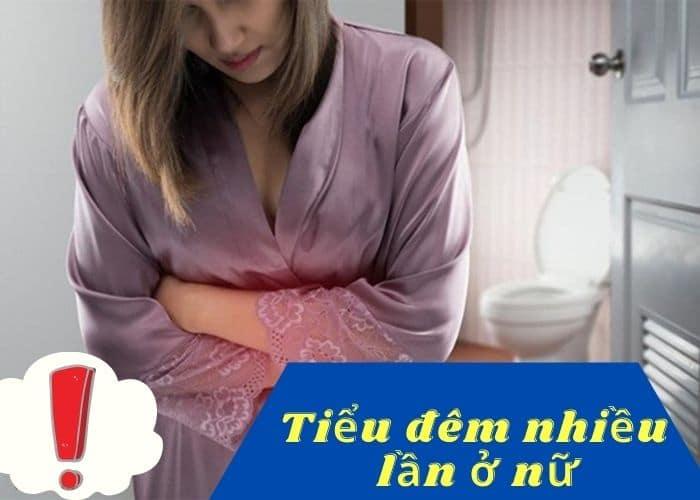 tieu dem nhieu lan o nu gioi - Hé lộ bí quyết thần kỳ chữa bệnh đi tiểu đêm nhiều ở nữ giới đơn giản, hiệu quả