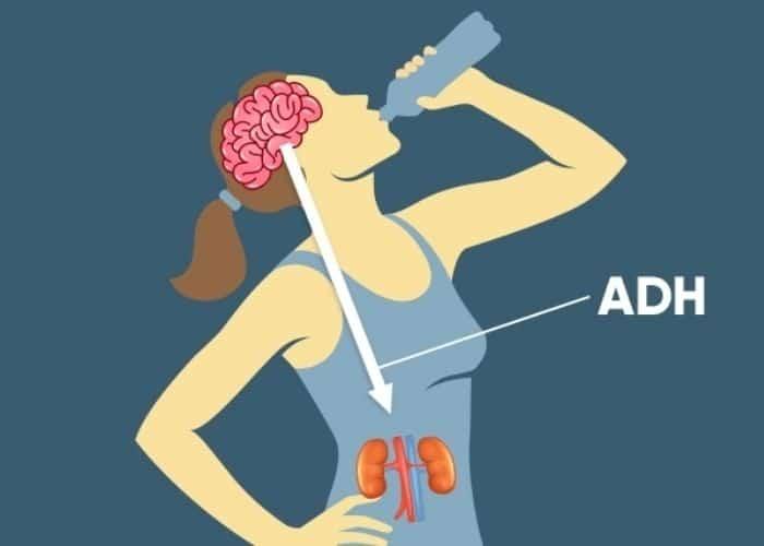 tieu nhieu khat nuoc do dai thao nhat - [GIẢI ĐÁP] Đi tiểu nhiều và khát nước liên tục là bị bệnh gì?