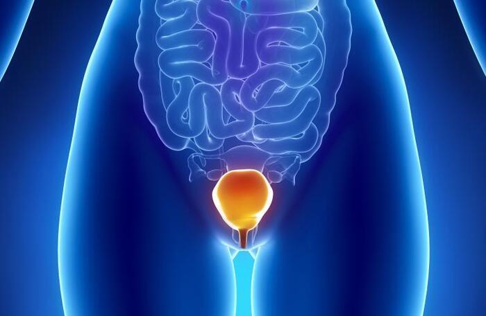 ngua vung kin di tieu nhieu 7 - Ngứa vùng kín đi tiểu nhiều là dấu hiệu của bệnh gì? Có nguy hiểm không? Cần điều trị như thế nào?