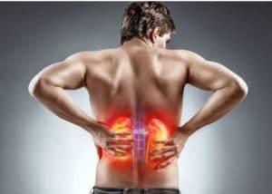 Thận là một cơ quan bài tiết quan trọng của cơ thể tuy nhiên nhiều người bệnh chưa biết cách làm thế nào để bổ thận lợi tiểu